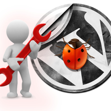 WordPress bug